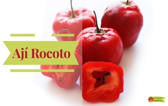 Aji Rocoto