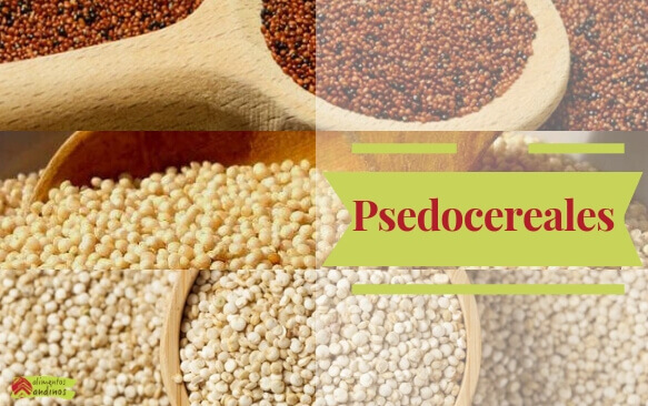 Pseudocereales