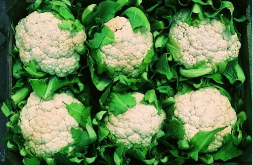 Coliflor Brassica oleracea var. botrytis 3