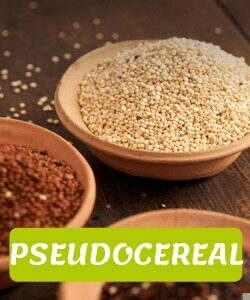 pseudocereales andinos