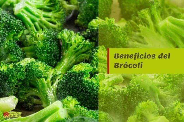 beneficios brocoli propiedades