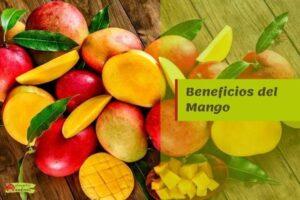 beneficios mango propiedades
