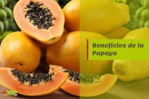 beneficios papaya propiedades