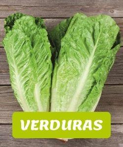 verduras andinas