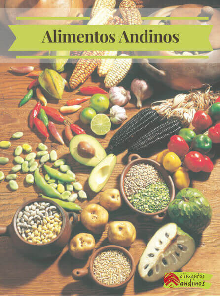 Alimentos andinos img
