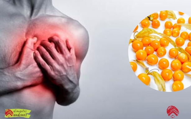 Beneficios aguaymanto golden berry Benefits (2) (1)