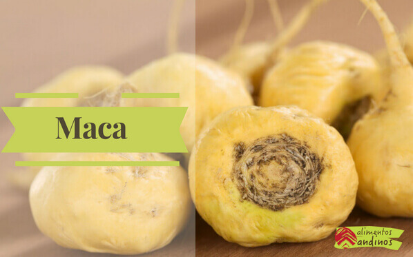 Photo of Maca Andina