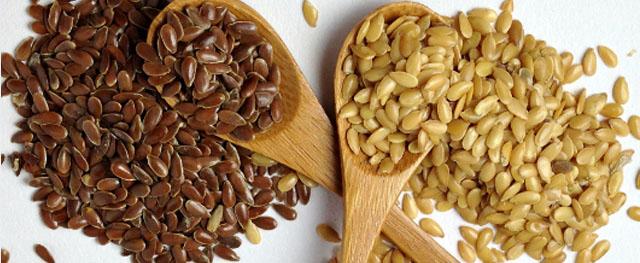 Semillas-Lino-marrones-y-doradas/ flax seeds