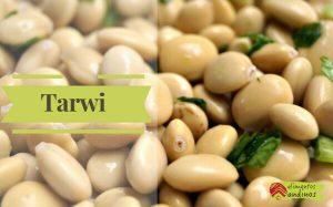 Tarwi